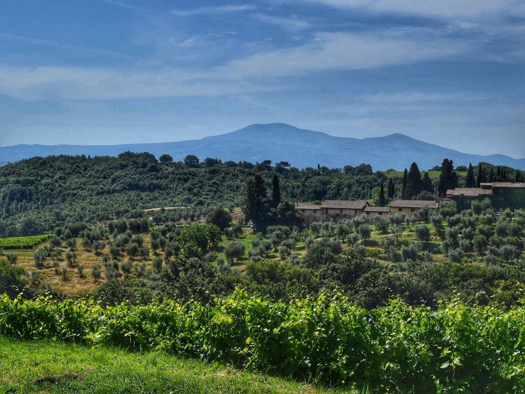 montalcino view