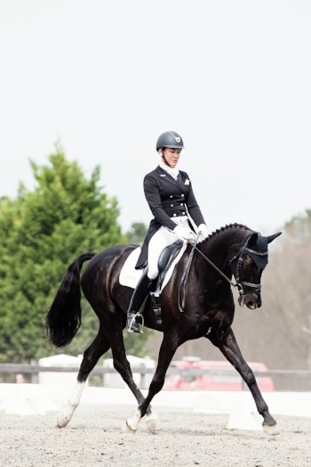Dressage Is The Fundamental Training Of The Sport On Which The Other Two  Phases Are Built As It Develops The Strength And Balance For The Rigors Of  ...