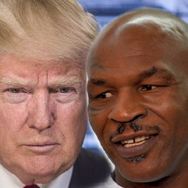 Credits:  Official portrait of President-elect Donald Trump ; Tyson ©  Gabriela Anton  |  Dreamstime.com .