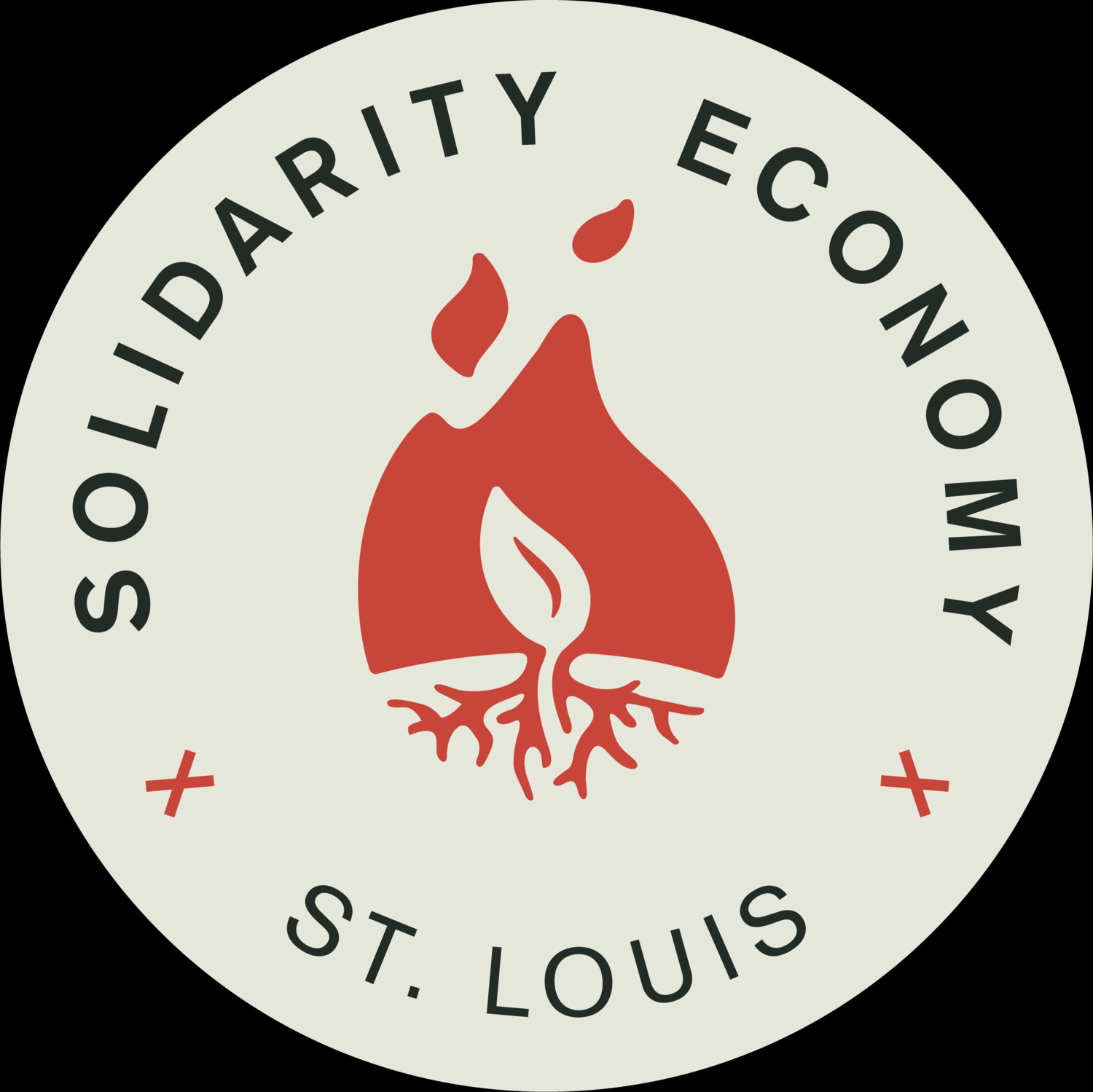 Solidarity Economy St. Louis