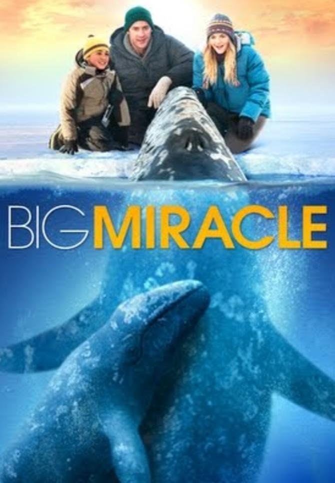Big Miracle.png