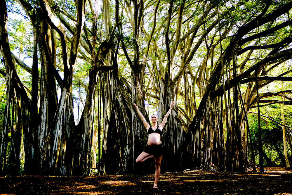 Lindsay Stark 7 months pregnant doing tree pose with the Banyan Tree in Kawela Bay, Oahu.
