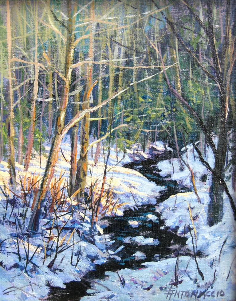 Boone Fork in January *