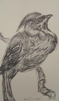 Ink Sketch 3