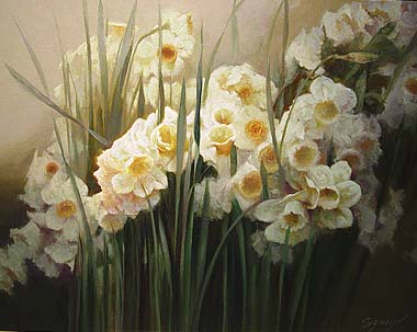 Daffodils *