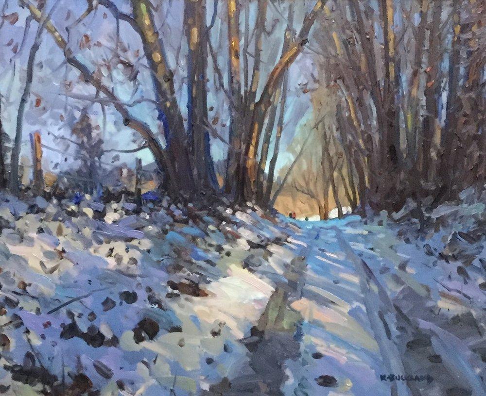A Winter Evening Stroll •
