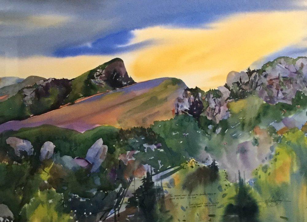 The Natural World, Hawksbill from Chimneys *