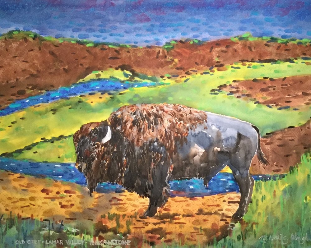 Old Chief, Lamar Valley, Yellowstone