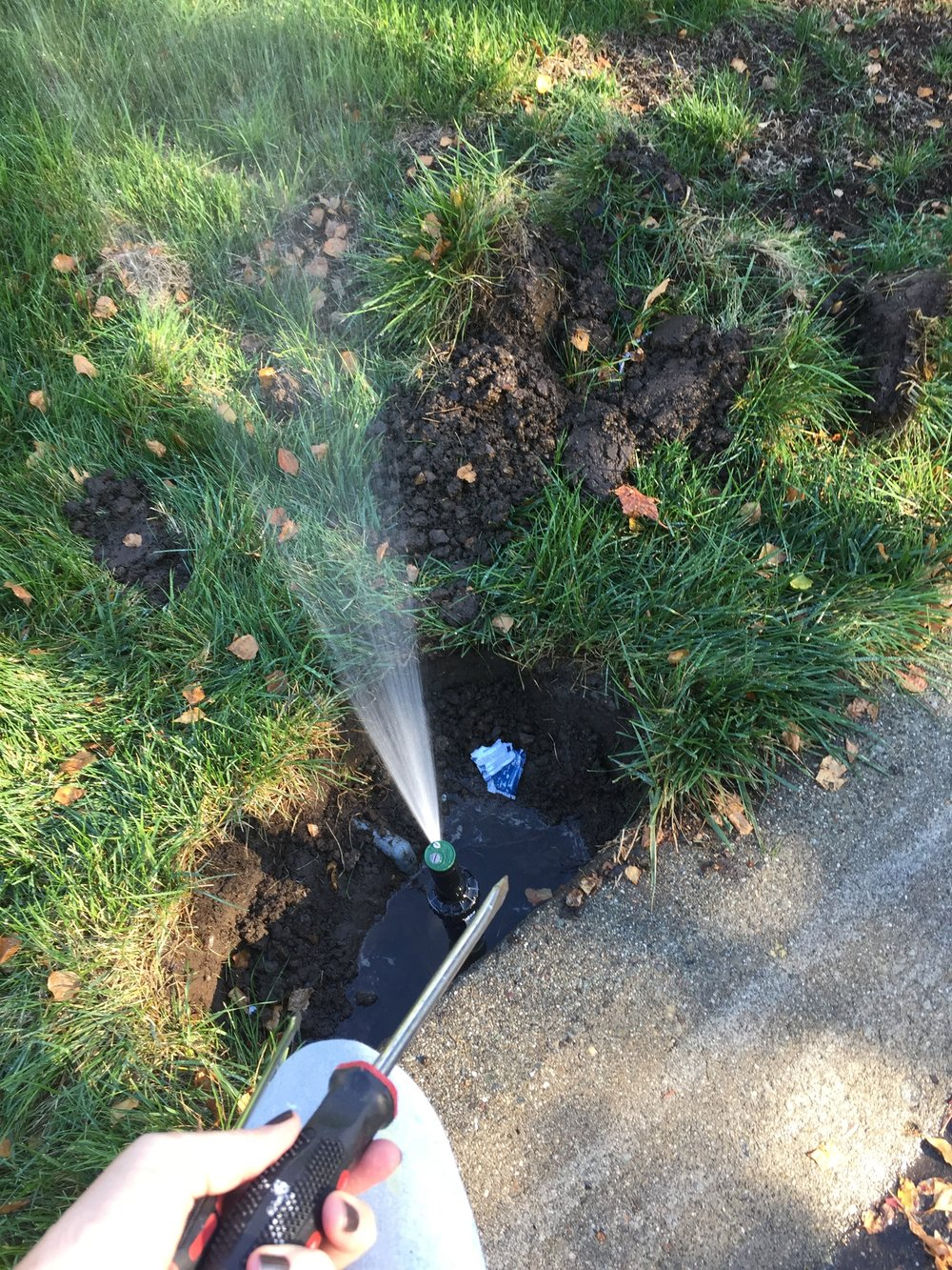 Sprinkler Repair courtesy of youTube, Ace Hardware and ME!