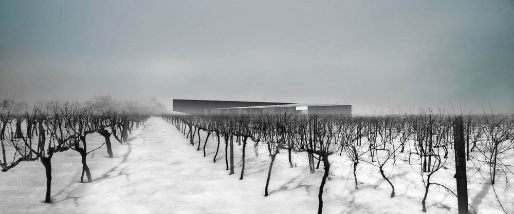 Pearl Morrisette Winery - Exterior Vinyard WInter