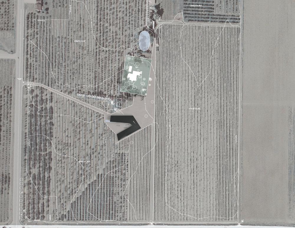Pearl Morrisette Winery - Site Plan Vineyard