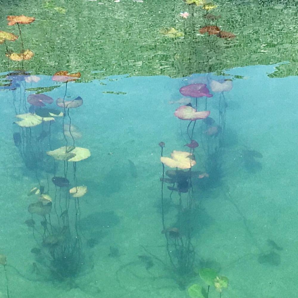 gh3 - Borden Park Natural Swimming Pool - vhii