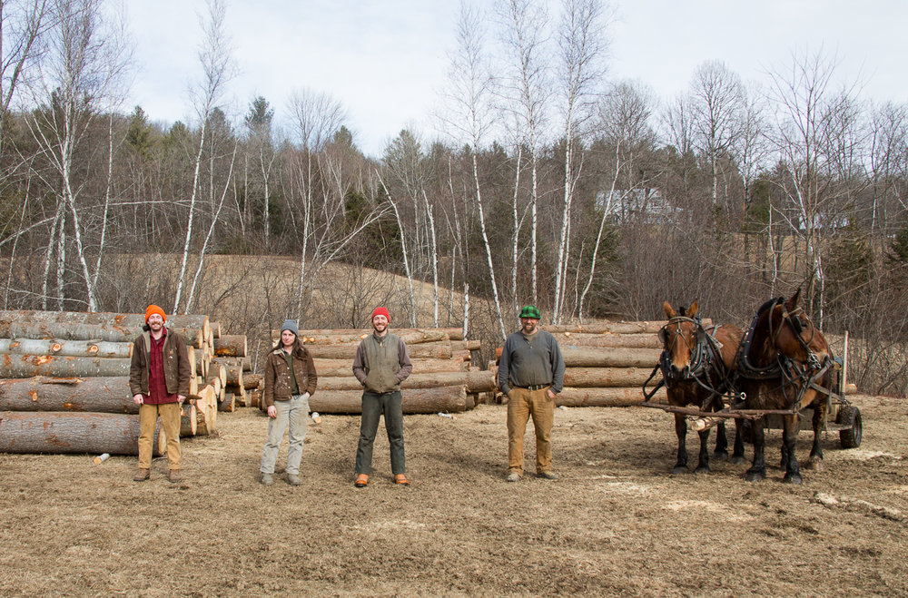 Stitchdown Farm draft horse logging