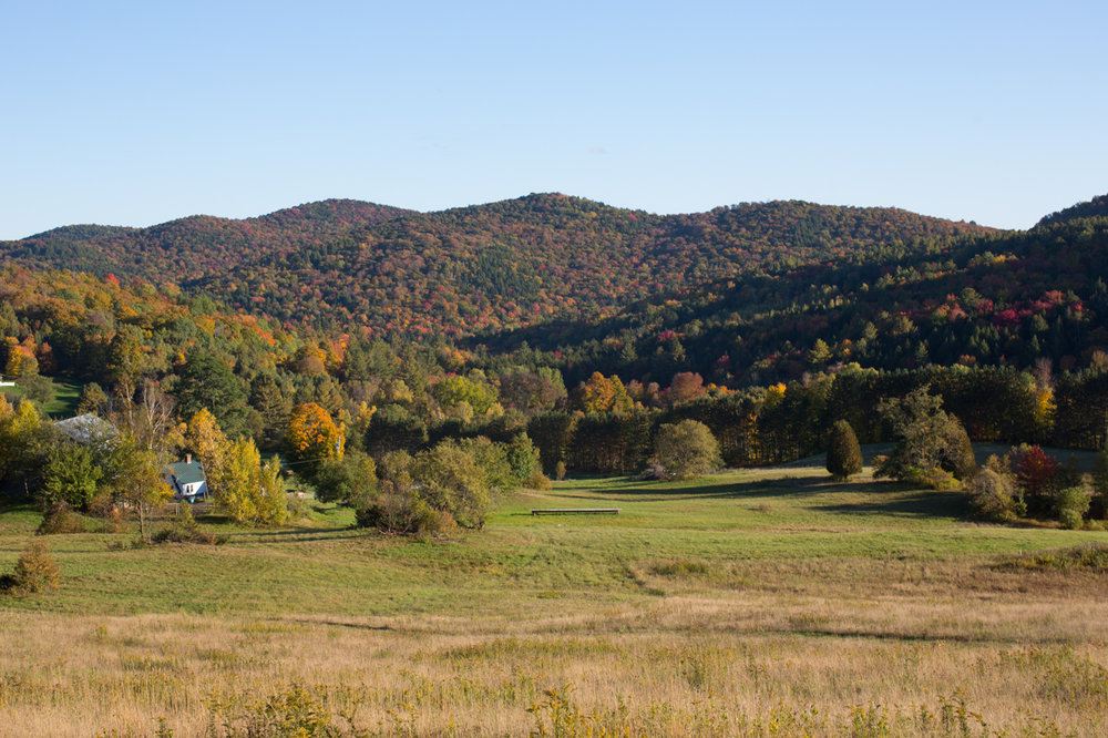 Stitchdown Farm Vermont Wedding Views