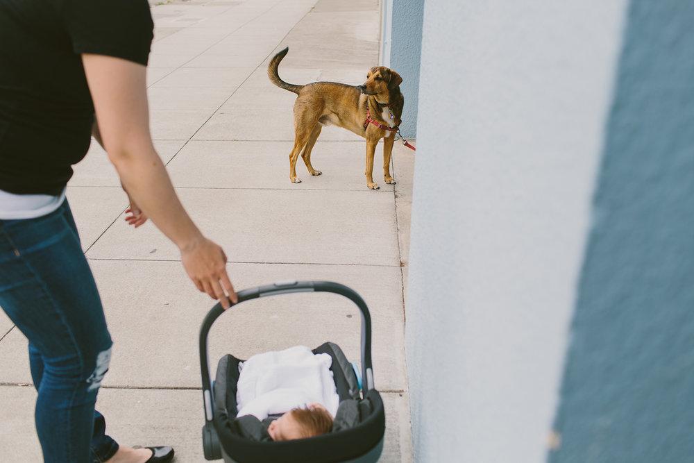 ohhappydawnphotographyfamily-40.jpg