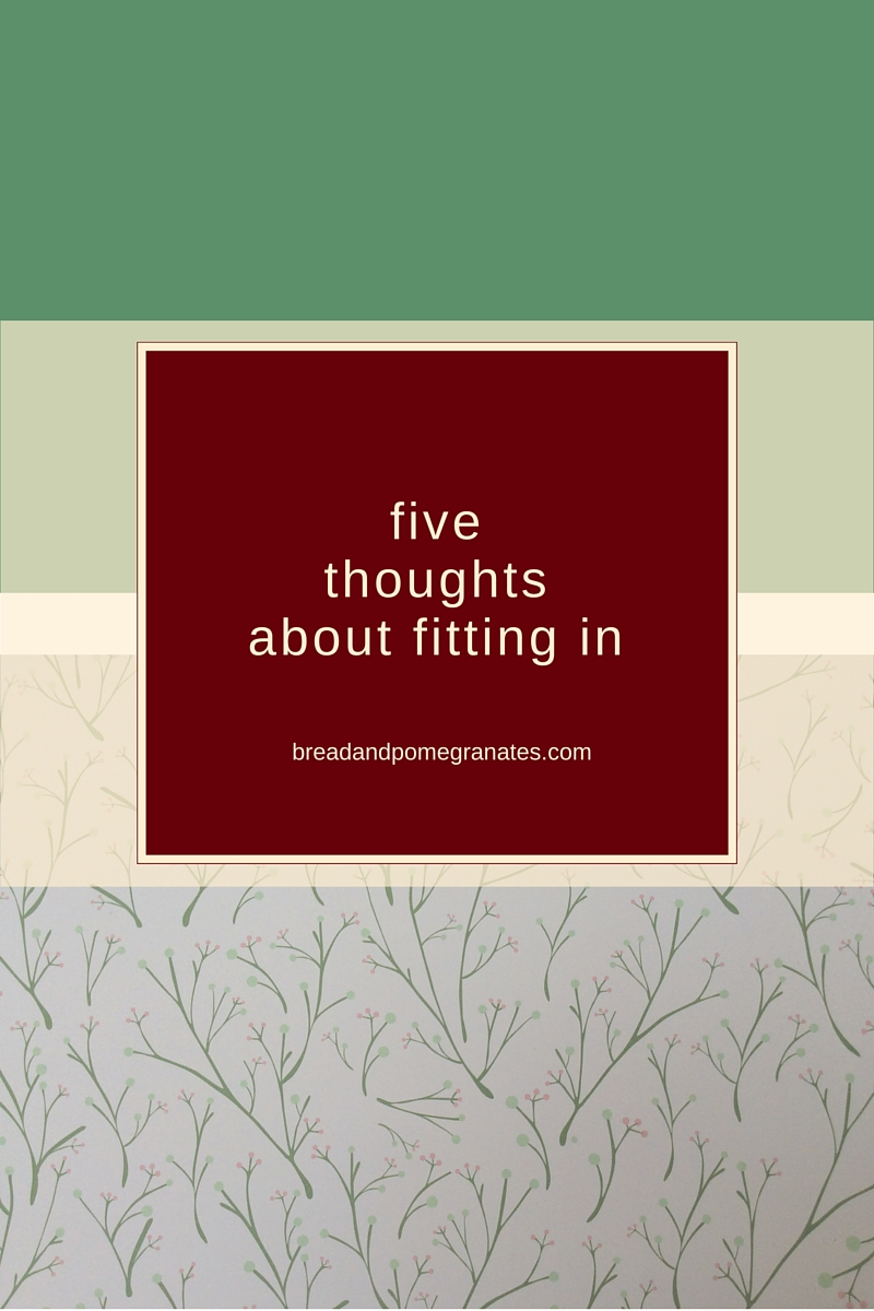 5thoughtsaboutfittingin