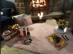 Fireside Picnic at Home   February in Central Ohio is not exactly picnic weather but it can be... Set up a romantic fireside picnic, complete with your valentine's favorite foods, wine, flowers and the fire of course!