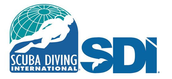 Scuba Diving International Home page