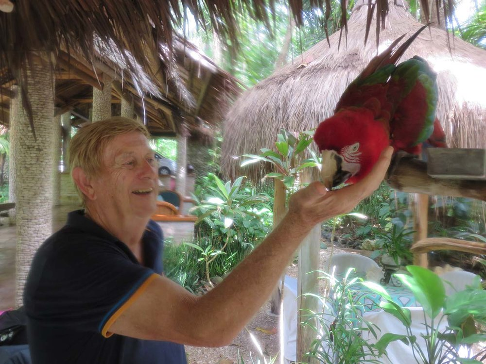 Mike Butler's prized macaw 'Mackie'