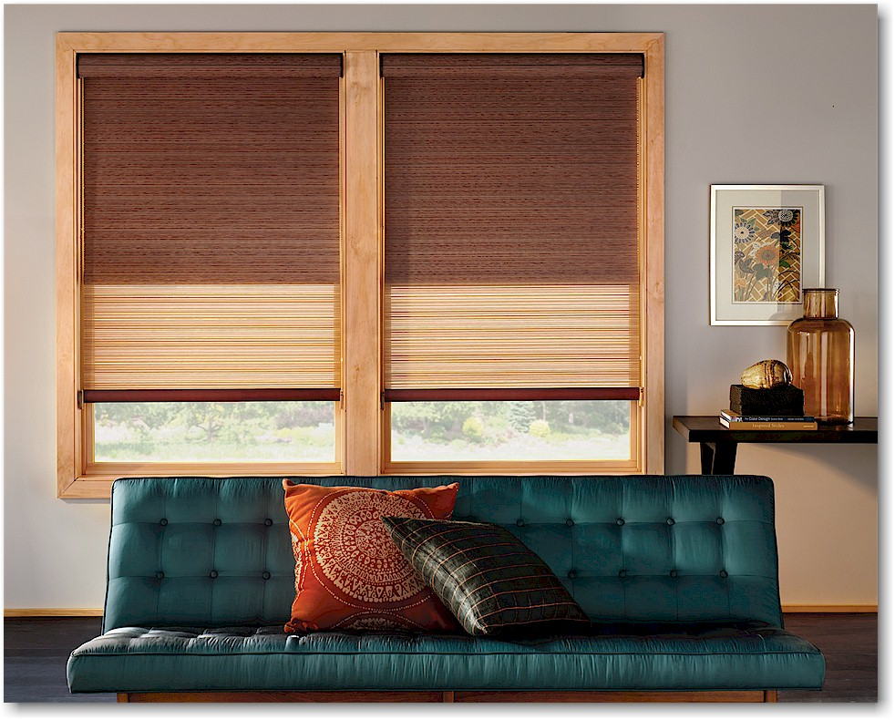 Roller Shades Hunter Douglas Ellie Ann's Interior Design