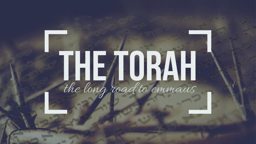 the torah series graphic SMALL-01.jpg