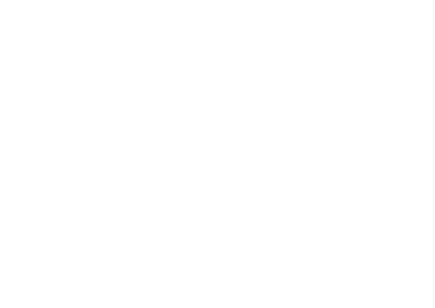 Chicago Marketing Solutions