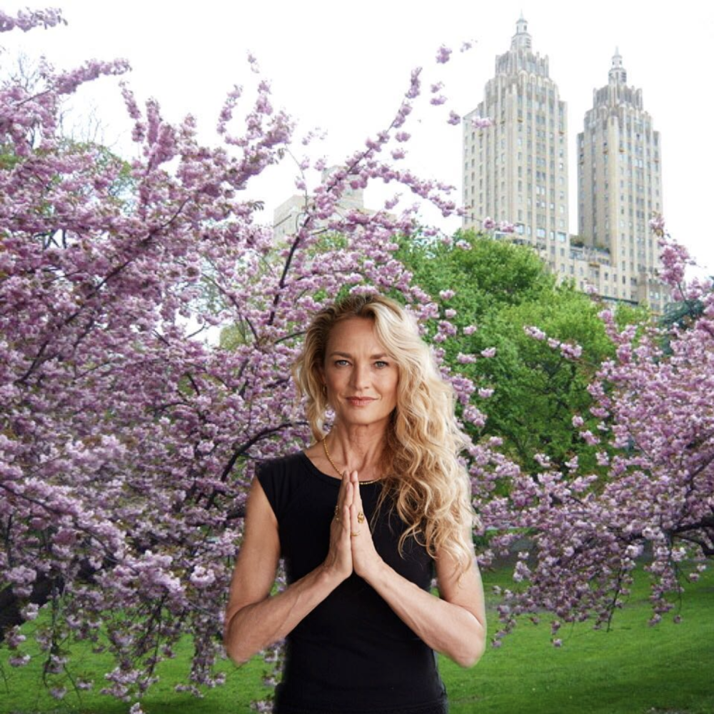 YOGA JOURNAL LIVE: NEW YORK -