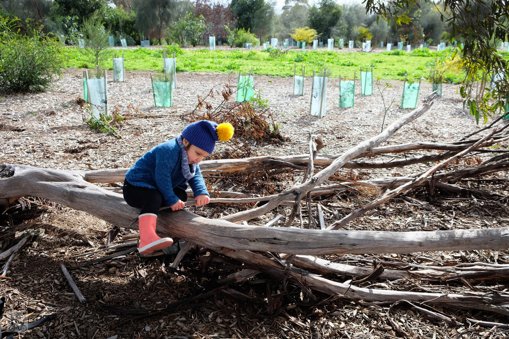 edgers creek bush playgroup, coburg north - mamma knows north