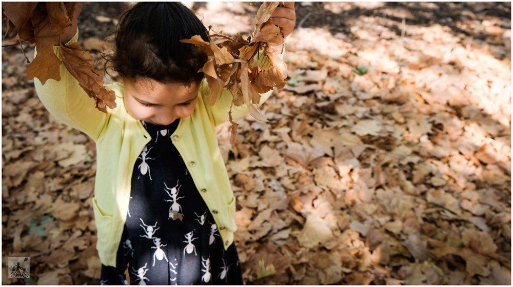 autumn planner - mamma knows north