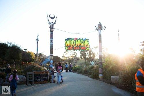 Wild Nights at Werribee Zoo - Mamma Knows North