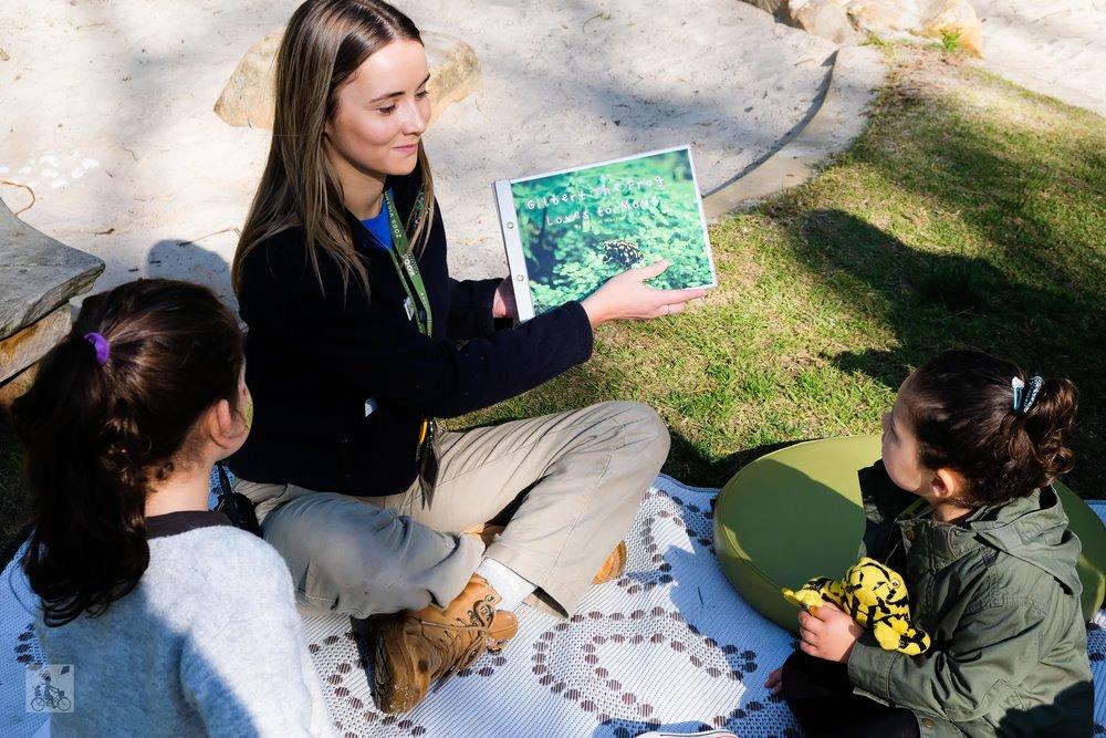corroboree frog fridays, melbourne zoo - mamma knows north