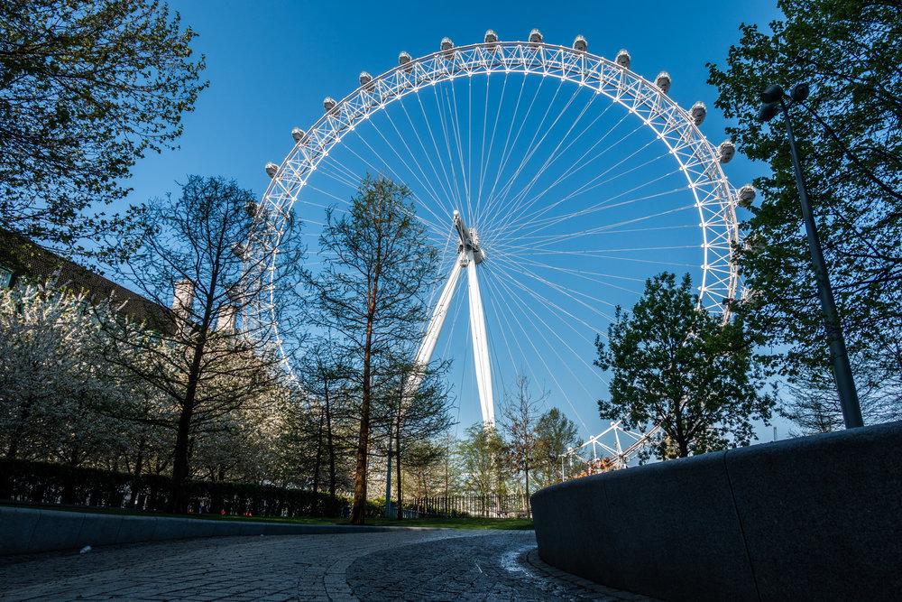 London Eye | Amongst Trees