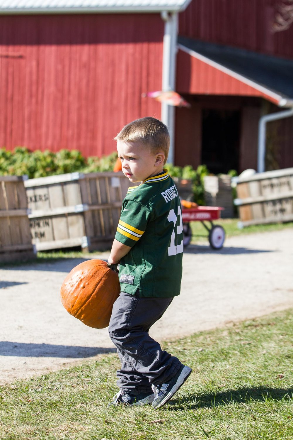 A day at the pumpkin farm in 2016