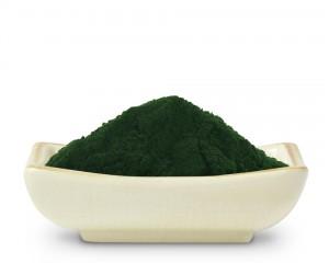 chlorellapowder.1280.1280