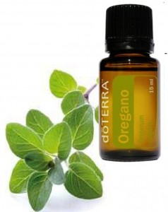 doTERRA-oregano-oil