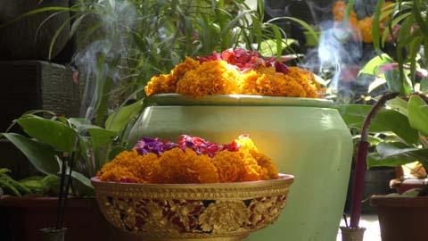 marigold-bali