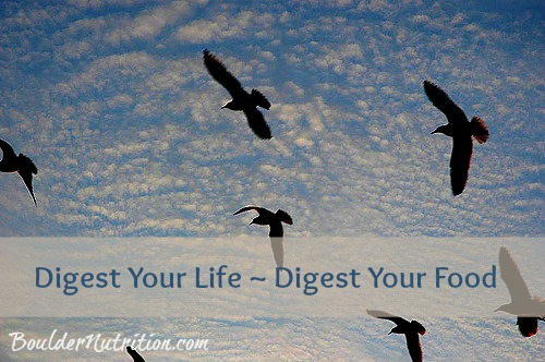 digestlife-2.jpg