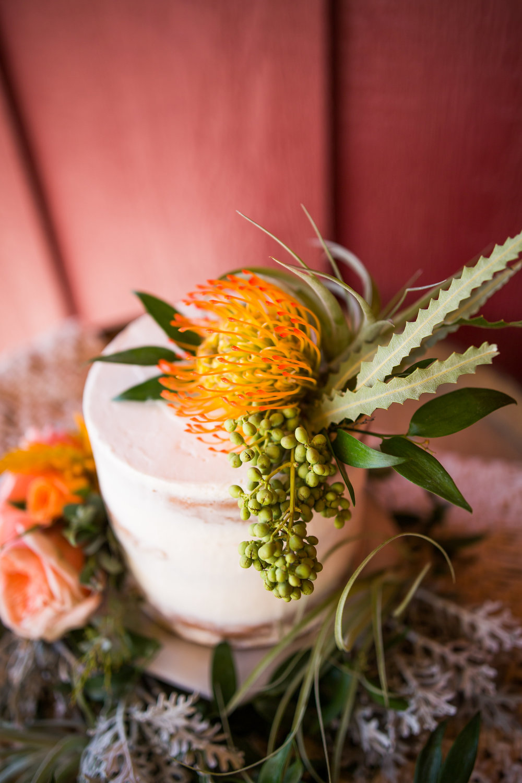 Sweet_Heart_Winery_Wedding_Ashley_McKenzie_Photography_148.JPG