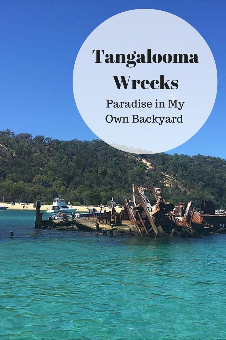 tangalooma wrecks paradise in my own backyard u2014 travel blog squad