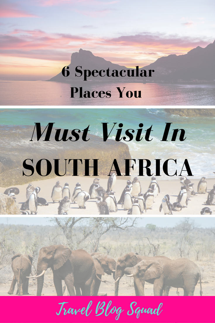 6 Spectacular Places You Must Visit In South Africa: A Local's Perspective. South Africa has so many unique and wonderful spots to tick off your bucket list. Whether you wish to discover elephants in their natural habitat or drive the Garden Route, South Africa has it all. Click here to read a local's perspective on 6 Spectacular Places You Must See In South Africa!