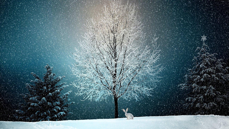 The Winter Solstice Yoga Tarot Astrology Emily Ridout