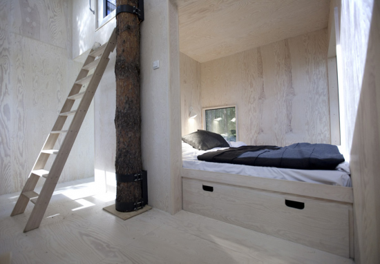 treehotel-1