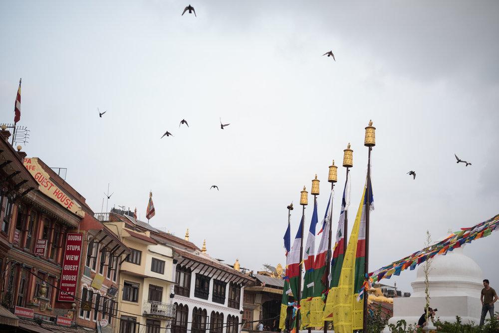Nepal_Phill O'Leary_23_20181004-L1009632.jpg