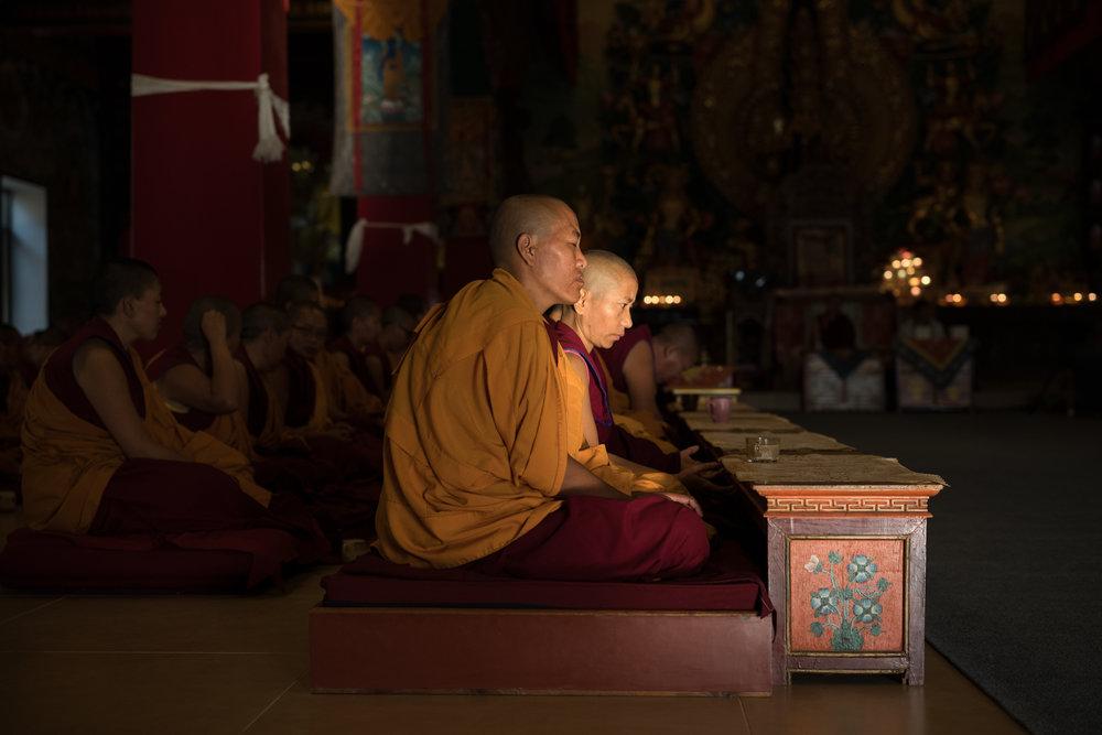 Nepal_Phill O'Leary_64_20181012-L1000483.jpg
