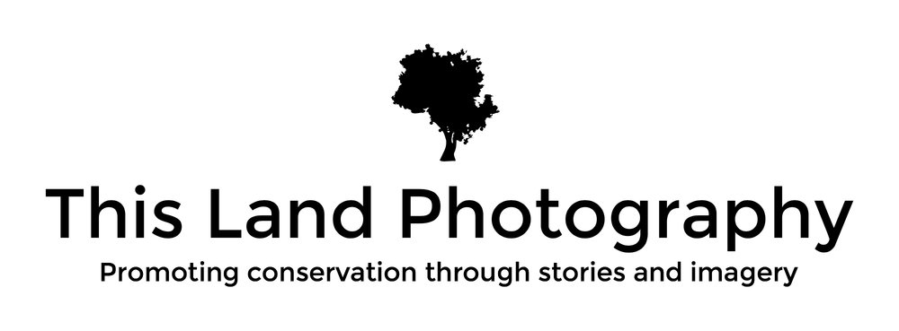 This Land Photography Logo - Welcome Blog