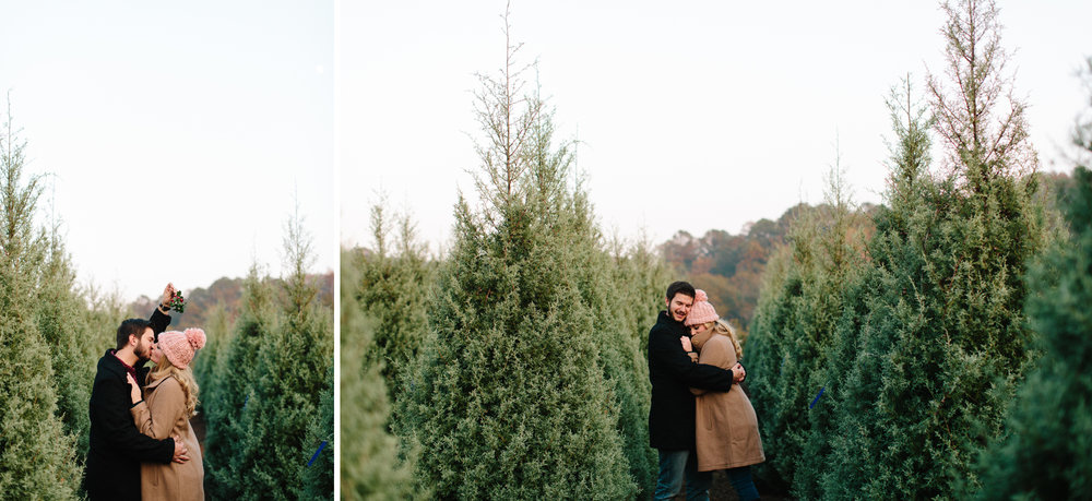 christmas tree farm photos