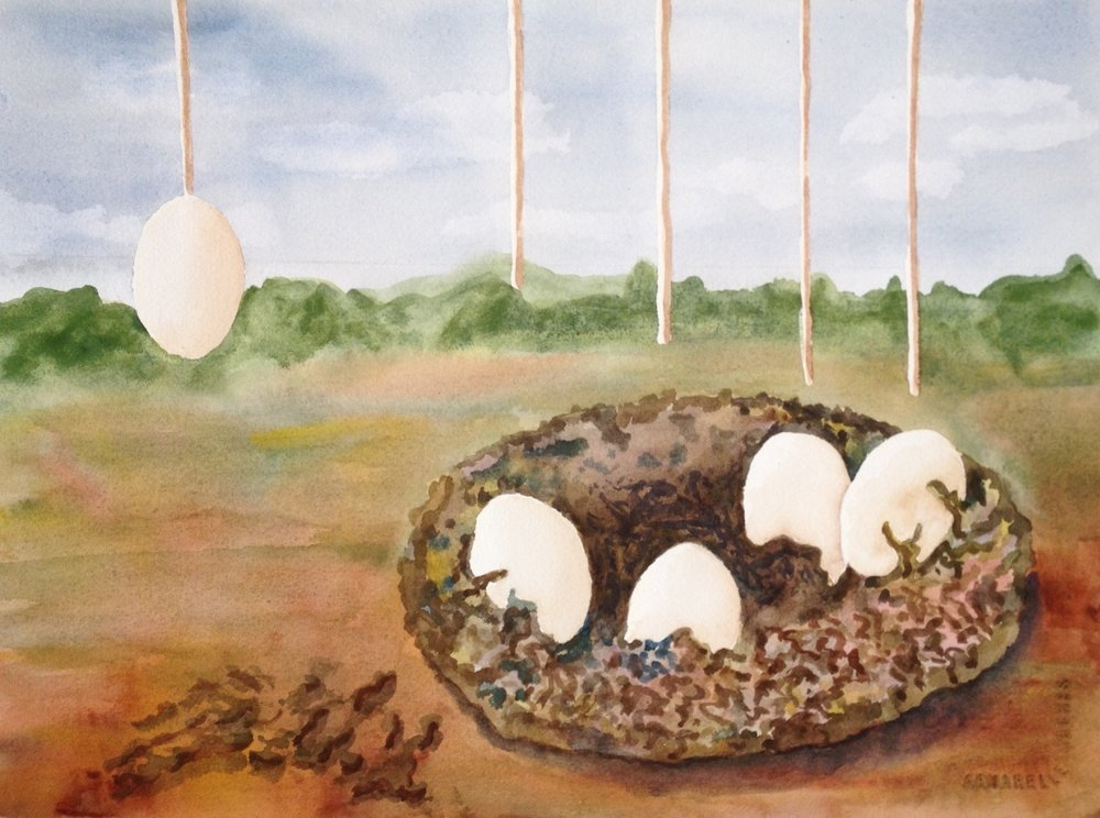 """Sibling Eggs in a Nest 