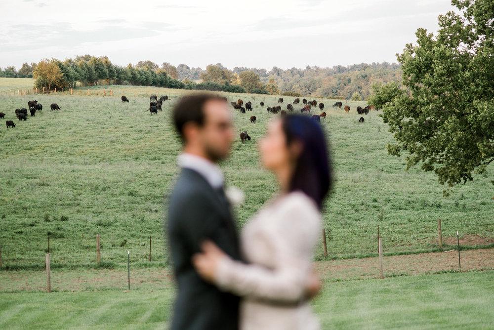 wedding-photographer-lexington-kentucky-spring