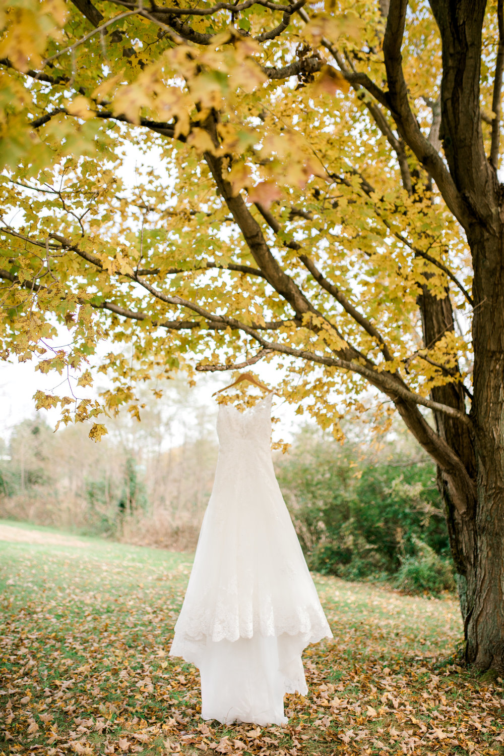 lexington-kentucky-wedding-photographer