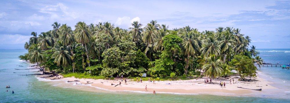 Zapatilla+Island